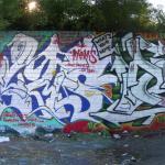 ELMS, DEST, 2007